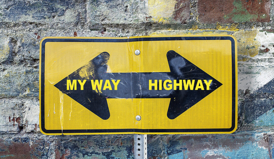 Traffic sign pointing in opposite directions: my way and highway.
