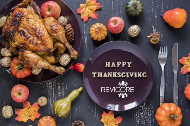 HAPPY THANKSGIVING - REVICORE