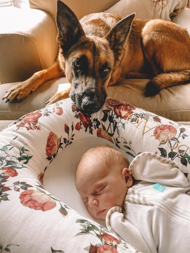 BABY FAVORITES
