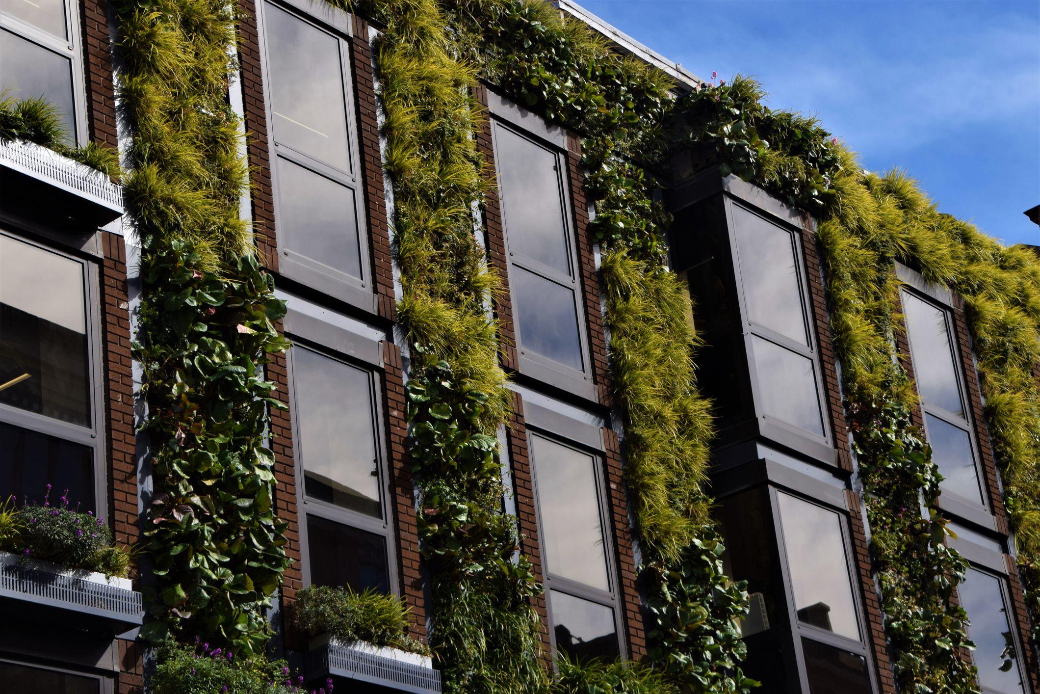 sustainability_v01