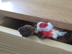 Simon in  a drawer
