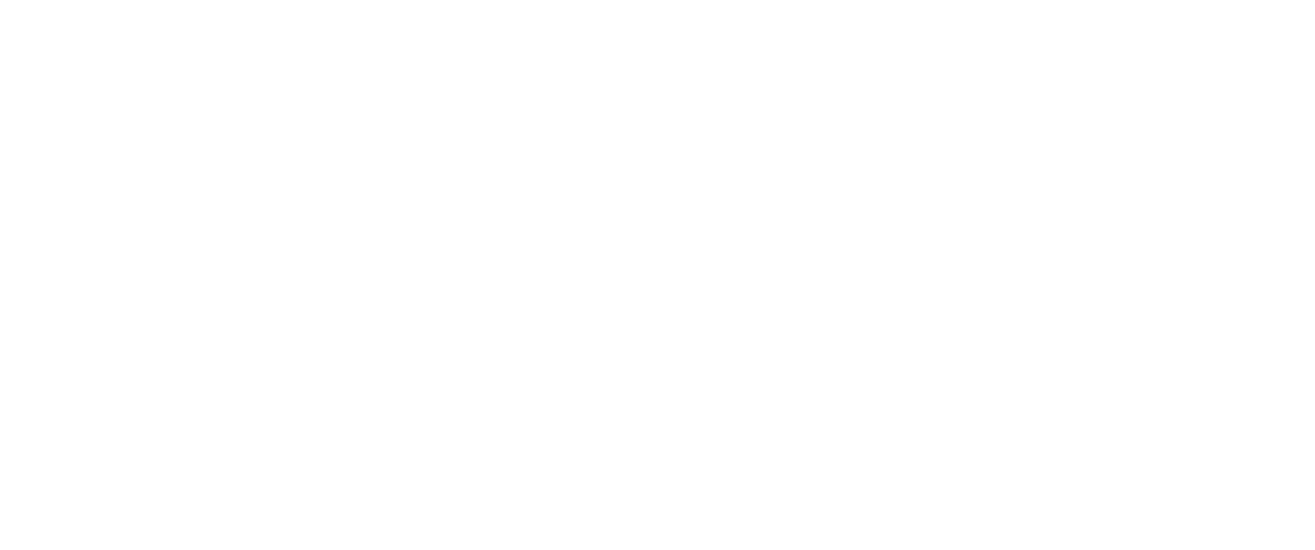 Tinsley Park Partners