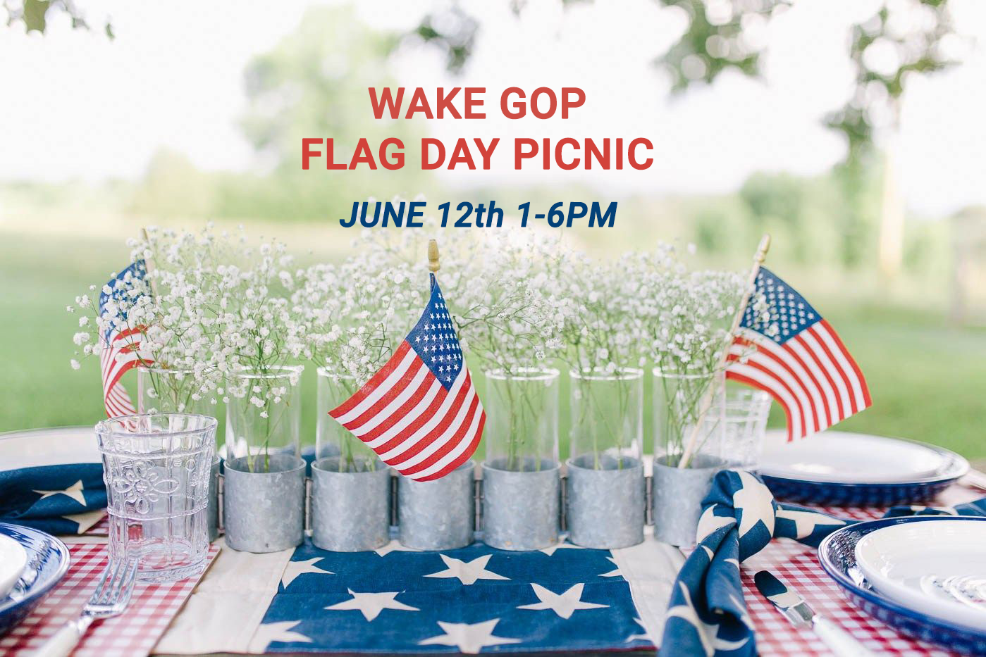Flag Day Picnic