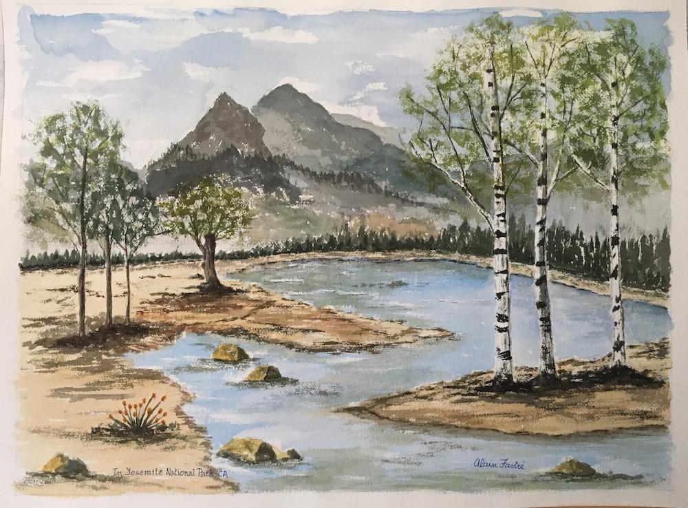 Birch trees in Yosemite Park