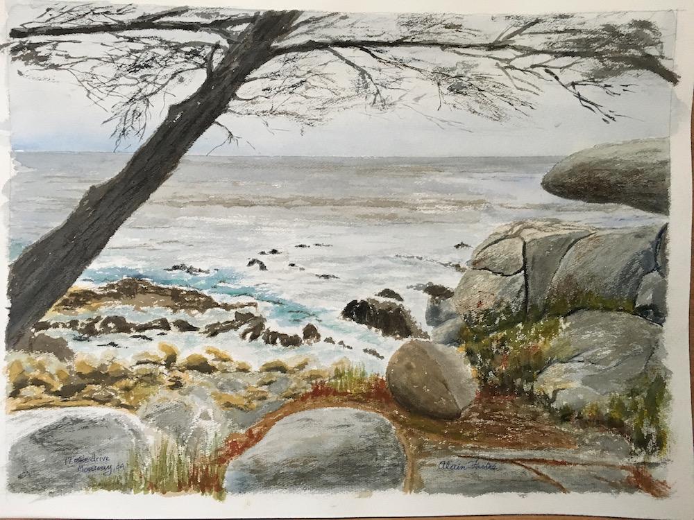 Cove along 17-mile drive Monterey
