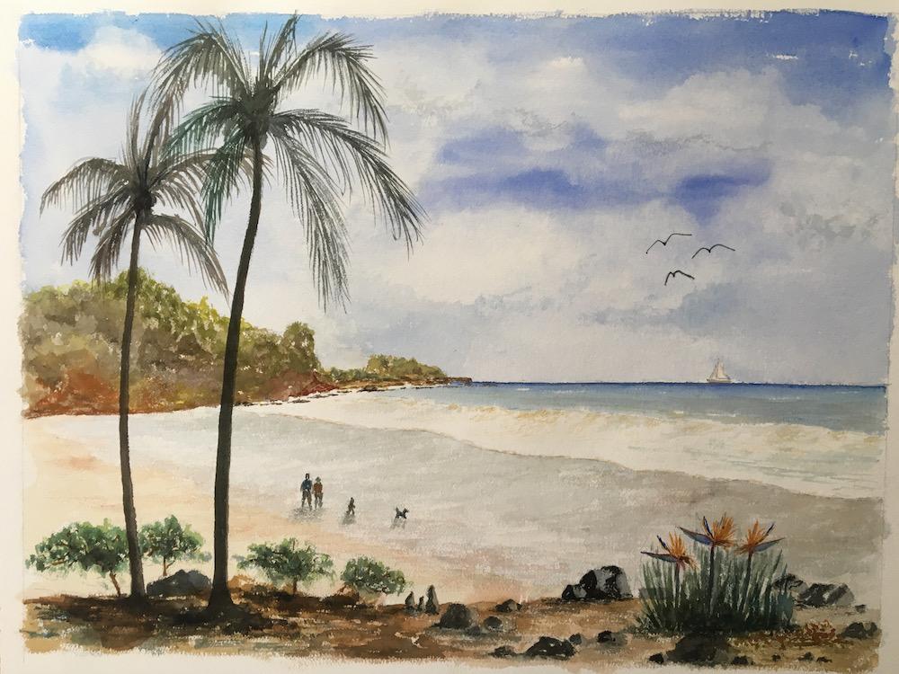 Maui Road to Hanna Palm tree beach