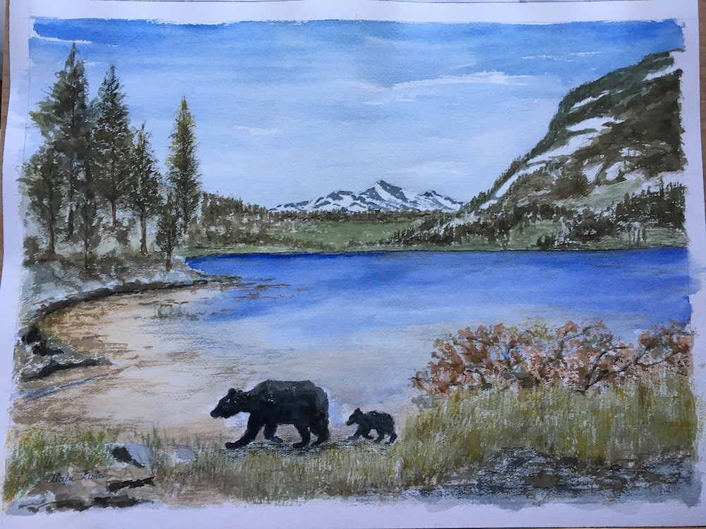Mother Bear and Cub around Lake Tahoe