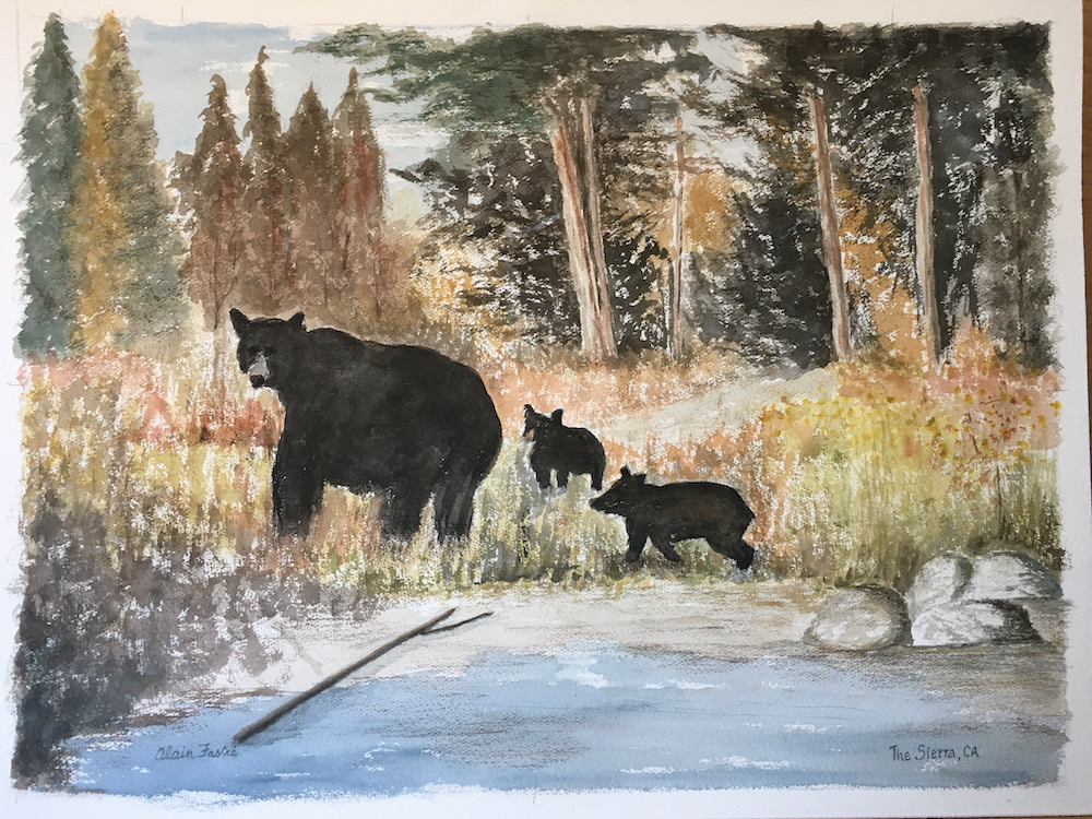 Mother bear and cubs in Sierra Forest