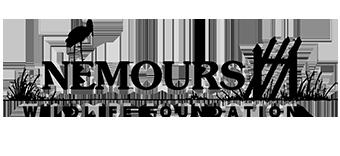 Nemours Wildlife Foundation | Natural Resource Study | ACE River Basin