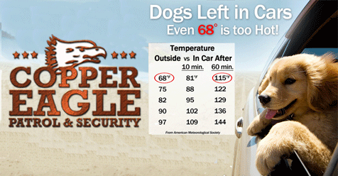 Copper Eagle Patrol & Security – Children and Pets