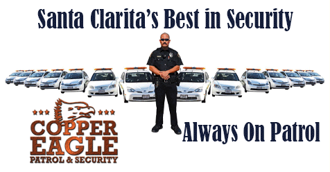 Copper Eagle Always On Patrol…