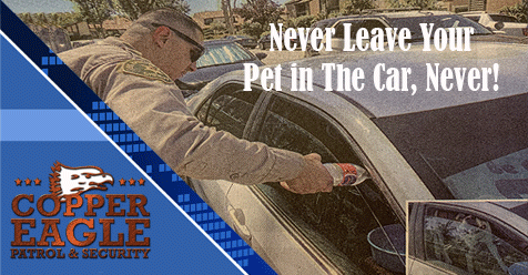 Don't Lock your Child or Pet in the Car