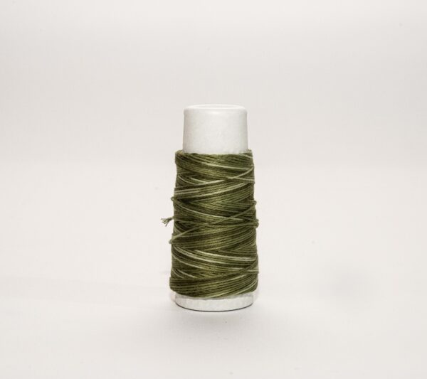 a spool of variegated green thread