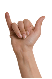 Sign of the horns exceptions: shaka sign