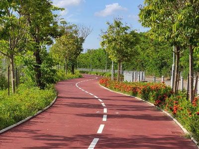 Cycle-Track
