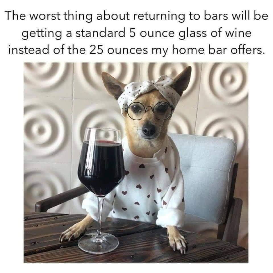 The Bar is Open!!!!