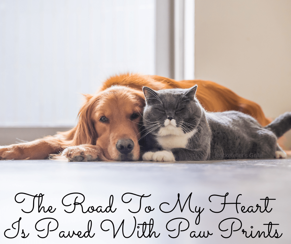 National Pet Parent Day