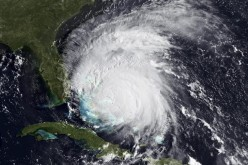 New York, Connecticut join N.C., Va., Md. and N.J. In Declaring State Of Emergency, Irene Evacuations