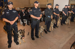 What Consitution? Courts Rule The American Gestapo Can Conduct Searches Without A Warrant
