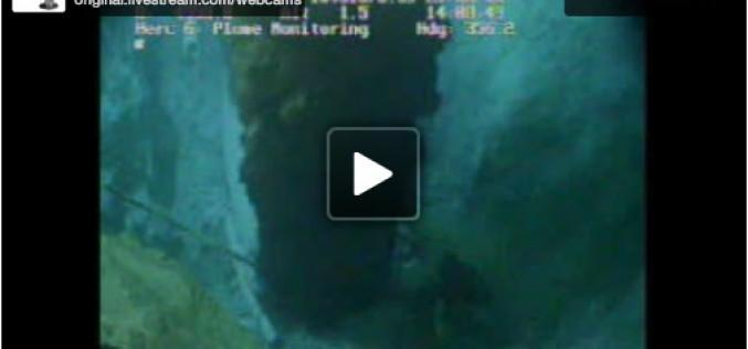 BP Live Oil Spill Cam Archive