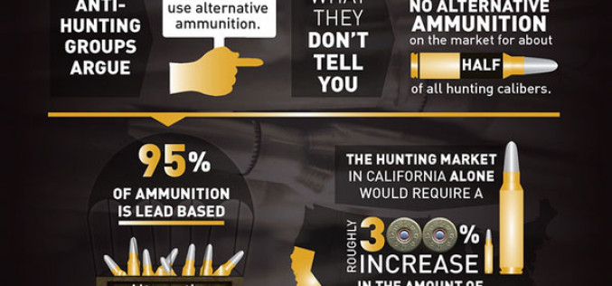 New Bill BANS Online Ammo Sales, Imposes Other Severe Restrictions