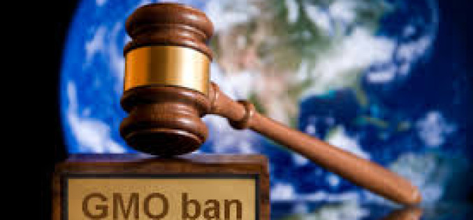 Lawsuit Seeks To Invalidate Monsanto's GMO Patents