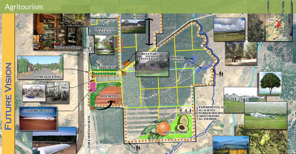 MDG-agritourism-berkeley-olive
