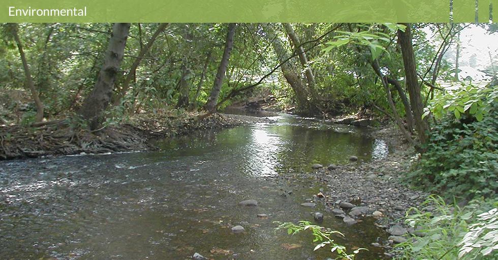 MDG-environmental-home-page