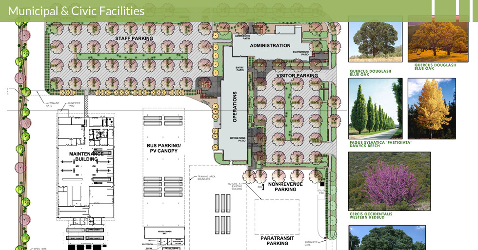 Melton Design Group, a landscape architecture firm, designed the Butte Regional Transit Center in Chico, CA. Completed with blue oak and bitch trees, western redbud bushes.