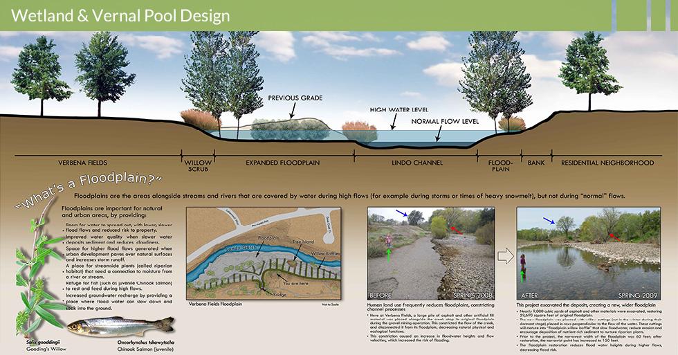 MDG-enviro-wetlands-wetland-protection-verbena-fields-floodplain-info