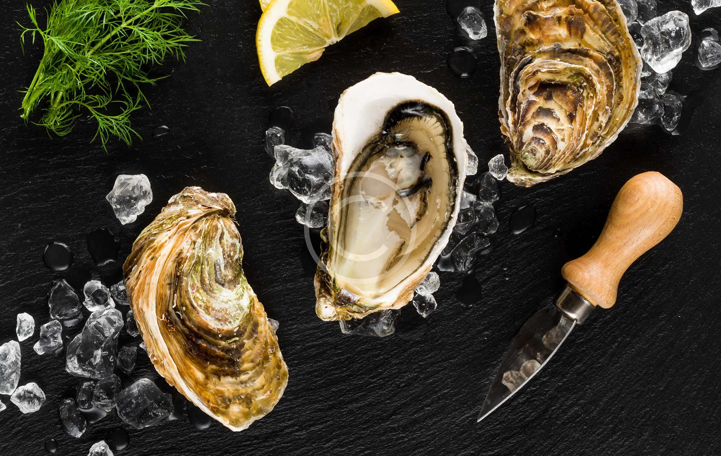 Sustainable Seafood and What you Can Do