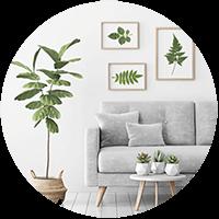 Home Decor & Furnishing