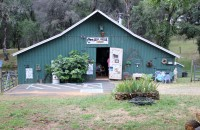 Jenny Cavaliere - Oregon House Farms 14582 Indiana School Road PO Box 118 Oregon House, CA 95962