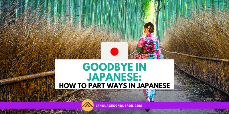Goodbye in Japanese: How to Part Ways in Japanese