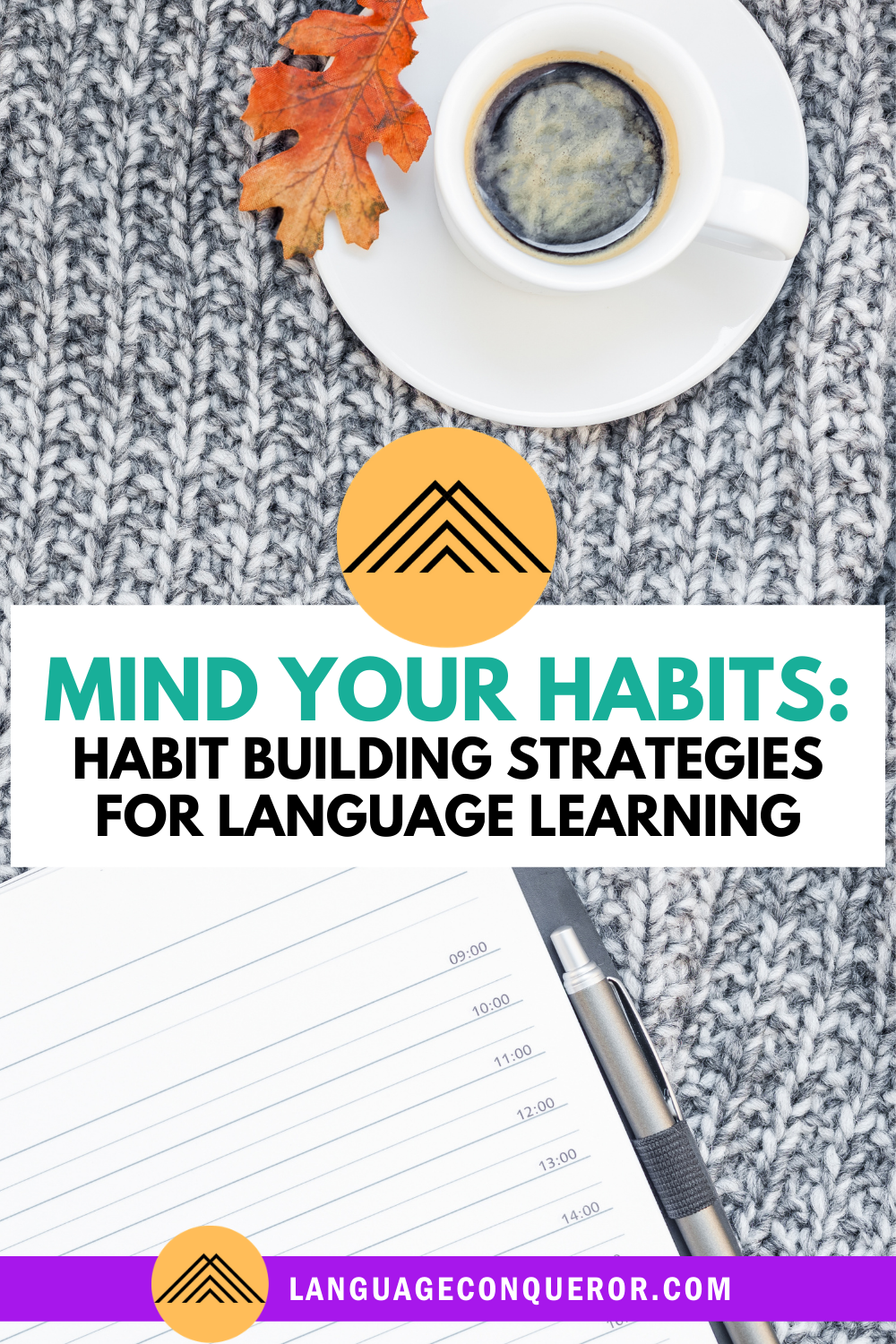 Mind Your Habits: Habit Building Strategies for Language Learning