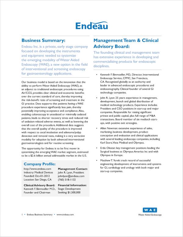 Business summary