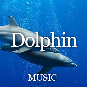 Dolphin Music