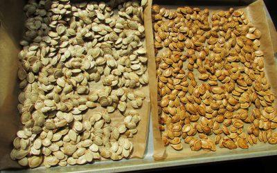 Original & Maple Brown Sugar Pumpkin Seeds