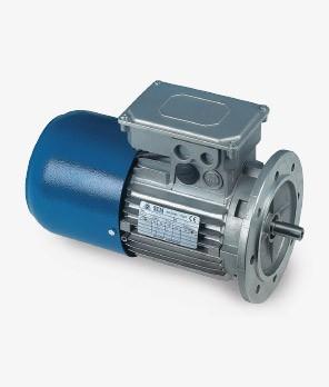 Electric motors and Brake electric motors T-M