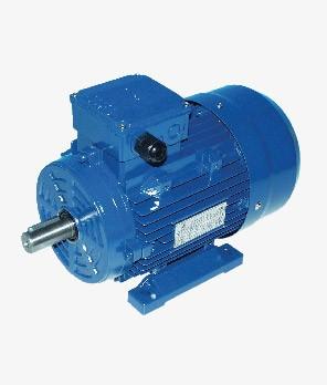 Import electric motors VL