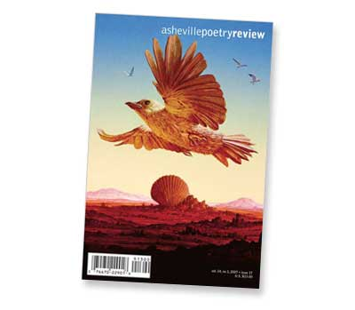 issue 17 cover