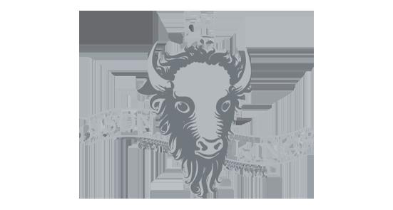 Bison Kings logo