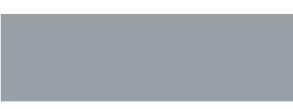 Falcon Technology Systems logo