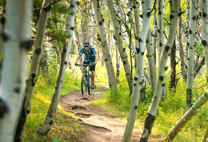 Impact Laramie mountain biker image
