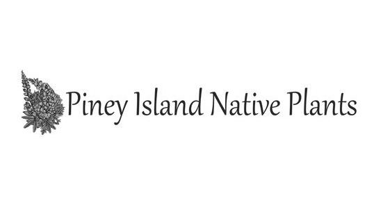 Piney Island Native Plants logo