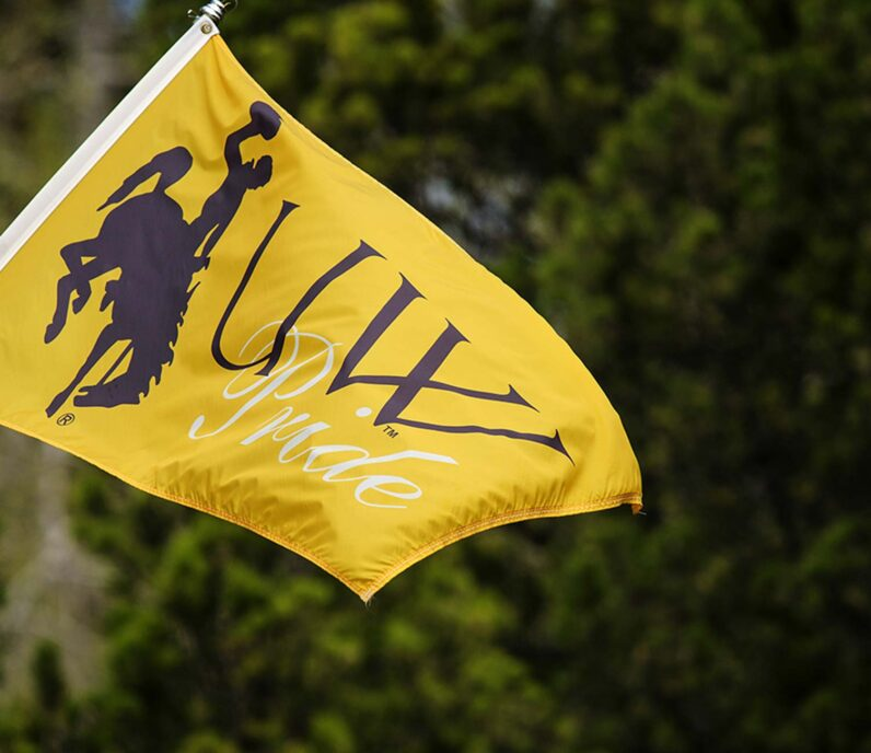 University of Wyoming flag