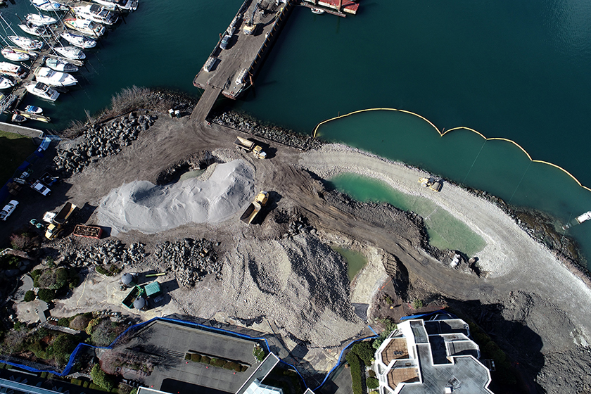Middle Harbour Remediation