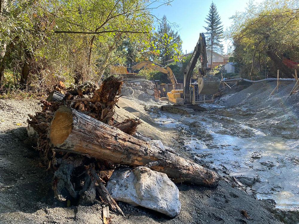 Reay Creek Pond Remediation