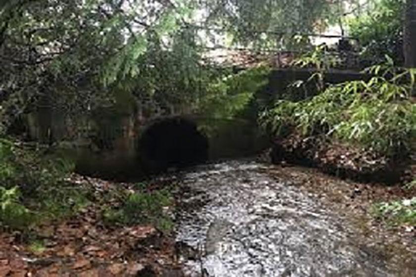 Gallant Creek Sediment Basin