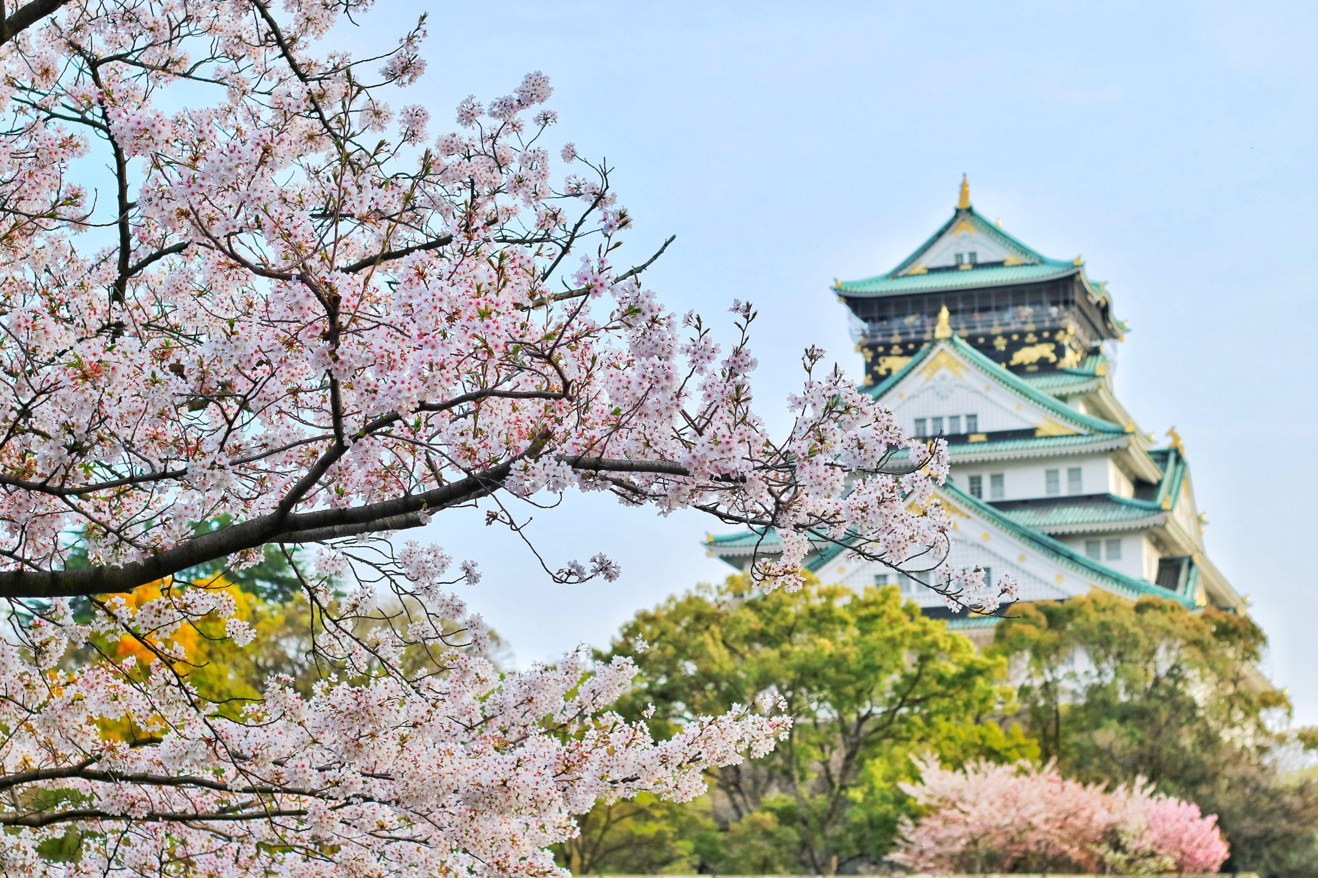 櫻花祭 (2021年3月15日 – 4月15日)